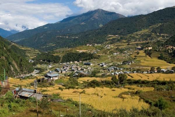Tashi Yangtse